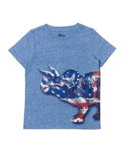 Little Boys Short Sleeve Graphic T-shirt