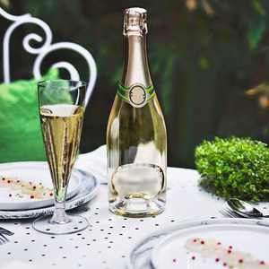 BalsaCircle 12 Clear 4.7 oz. Disposable Plastic Tall Champagne Flutes Glasses - Wedding Reception Party Buffet Catering Tableware