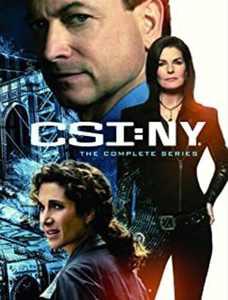 CSI: NY: The Complete Series (DVD)