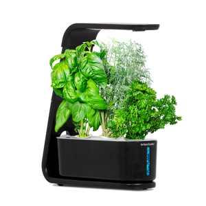AeroGarden Sprout - Indoor Garden with LED Grow Light, Black