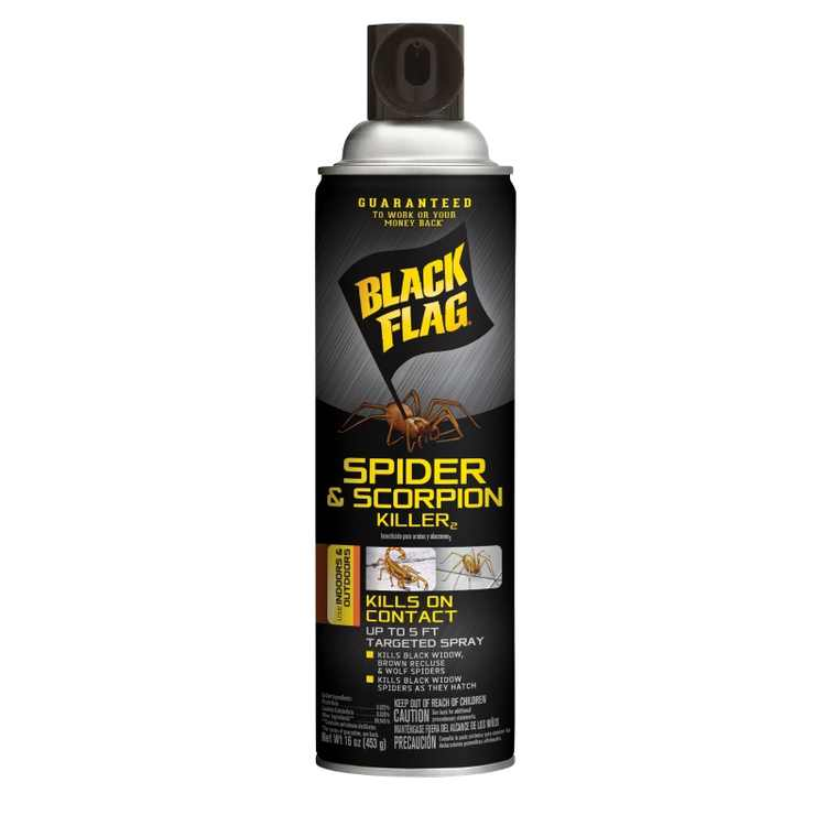 Black Flag Spider & Scorpion Killer, Aerosol, 16-oz