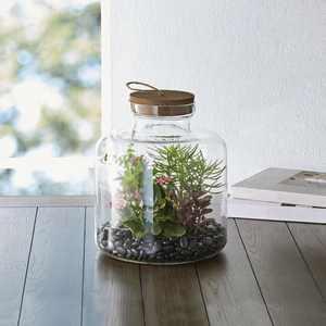 Better Homes & Gardens Med Terrarium