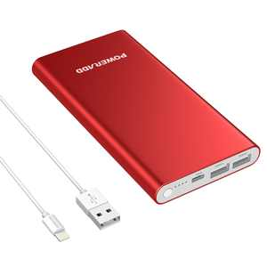 Poweradd Pilot 4GS 12000mAh Power Bank Dual USB Ports External Battery Portable Charger for iPhone iPad Samsung Galaxy Mobile Cellphone with Lightning 8-Pin Cable (3.3ft)