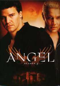 Angel: Season Five (DVD)