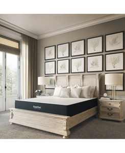 """Ladan 10.5"""" Cool Gel Memory Foam Cushion Firm Pillow Top Mattress- Queen, Mattress in a Box"""