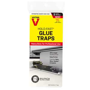 Victor Hold-Fast Rat Glue Traps