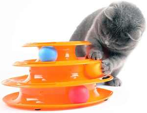 Meidong Cat Tracks Cat Toy - Fun Levels of Interactive Play - Circle Track with Moving Balls Satisfies Kittys Hunting, Chasing & Exercising Needs