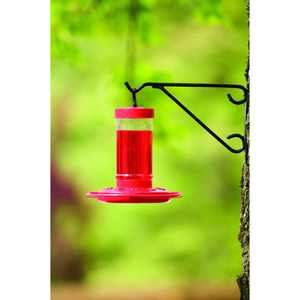 First Nature Hummingbird Feeder, 16 oz