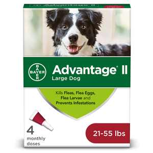 Advantage II Flea Prevention for Large Dogs, 4 Monthly Treatments