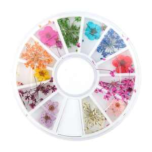 WALFRONT 12 Types Colorful Natural Dried Flowers Set Real Dry Flowers Nail Decoration Manicure Arts, Manicure Dried Flowers,Dried Flowers