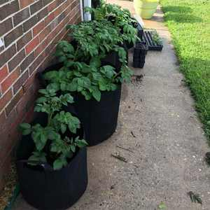 3-Pack 7 Gallon Grow Bags - Plant Growing Bags with Handles, Garden Bag Plant Pot for Grow Vegetables