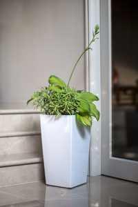 Algreen Modena 22-In. Square Taper Planter, Self-Watering, Glossy White