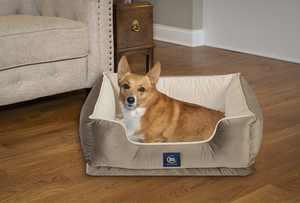 """Serta Ortho Cuddler Pet Dog Bed, Large, 34""""x24"""", Brown"""