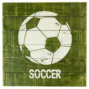 Soccer Plank Art - Pillowfort™