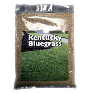Country Boy Seed 05LBKYBLGRS 5 lbs Kentucky Bluegrass Seed