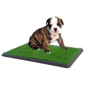 """Coziwow Large 30""""x20"""" Puppy Pee Pad Dog Potty Pad Mat Grass Indoor Outdoor Home Pet Training Pads"""