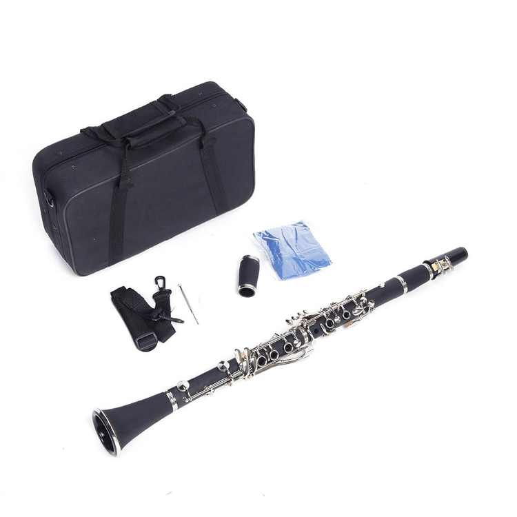 Ktaxon New B Flat Clarinet 17 key Hard Bakelite Set Includes Case,Manual,Lubricant and Cleaning Cloth,Black