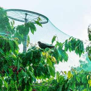 13ft x 33ft Green Anti-bird Net Garden Plant Fruits Vegetables Fence Mesh For Bird Poultry Rodents Rabbits Squirrels