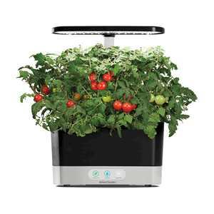 AeroGarden - Harvest - Indoor Garden - Easy Setup - 6 Gourmet Herb pods included - Black