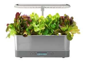 AeroGarden - Harvest Elite Slim – Indoor Garden – Easy Setup – 6 grow pods included - Stainless – Heirloom Salad kit