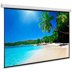 Manual Projector Screen Pull Projection Down Home Movie HD Theater 43 White Matte Portable Screen