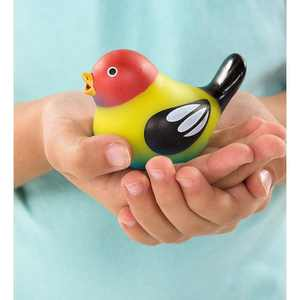 Schylling - Schylling Touch & Tweets Quartet Chirping Bird Toy for Kids, Set of 4