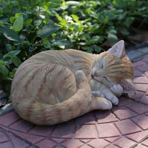 ORANGE TABBY CAT SLEEPING LYING DOWN