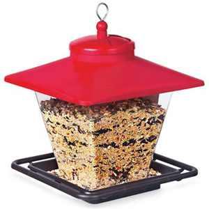 Caf Seed Feeder