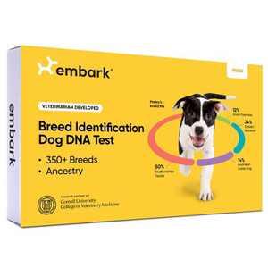 Embark Vet Breed Identification Dog DNA Kit