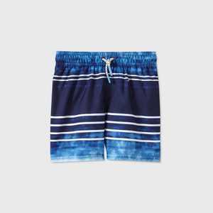 Toddler Boys' Tie-Dye Striped Swim Trunks - Cat & Jack Navy