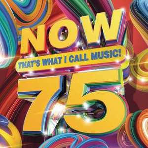 Various Artists - Now 75 (CD)