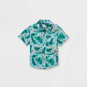 Toddler Boys' Kayak Print Challis Woven Short Sleeve Button-Down Shirt - Cat & Jack Blue