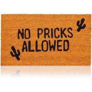 No Pricks Allowed Natural Coir Nonslip Doormat with Cactus (17 x 30 In)