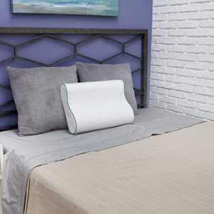 BioPEDIC Fresh and Clean Classic Contour Memory Foam Pillow with Antimicrobial Ultra-Fresh Treated Fabric