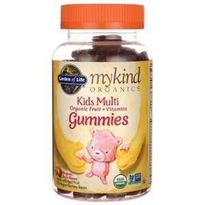 Garden of Life Kids Multivitamins Mykind Organics Kids Gummy Multi - Fruit 120ct