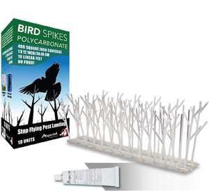 Aspectek Polycarbonate Bird Spikes Kit, 10 Feet with Transparent Silicone Glue Tube