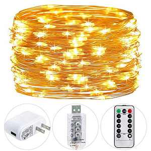 HSicily Fairy Lights Plug in, 8 Modes 33ft 100 LED USB String Lights with Adapter Remote Timer Twinkle Lights for Christmas Thanksgiving Bedroom Patio Christmas Wedding Party Indoor Outdoor