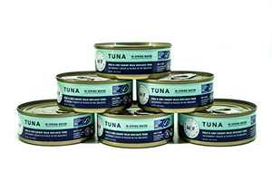 6 Pack Pole and Line Caught Wild Skipjack Tuna in Spring Water