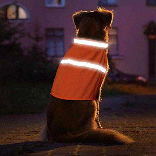 Clan_X Safe Reflective Dog Vest - High Visibility Fluorescent Lightweight Life Jacket Lighted Dog Harness Vest for Puppies(S, Orange)