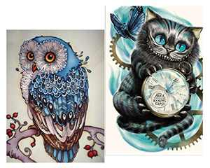 2Pack DIY 5D Diamond Painting Kit, Partial Drill Cute Cat & Owl Embroidery Cross Stitch Arts Craft Canvas Wall Decor