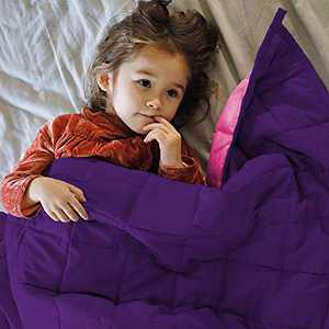 ZonLi Small Weighted Blanket 10 lbs(41''x60'', Pink/Purple), Cooling Weighted Blanket for Kids, Soft Material with Glass Beads