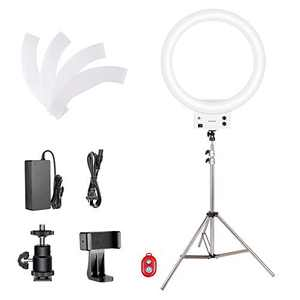 Neewer 18-inch White LED Ring Light with Silver Light Stand Lighting Kit Dimmable 42W 3200-5600K with Soft Filter, Hot Shoe Adapter, Cellphone Holder for Make-up Video Shooting