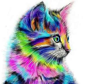 DIY 5D Diamond Painting by Number Kits, Crystal Rhinestone Diamond Embroidery Paintings Pictures Arts Craft for Home Wall Decor, Colorful Cat