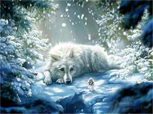 DIY Oil Painting Paint by Number Kit for Kids Adults Beginner 16x20 inch - White Wolf in The Snow, Drawing with Brushes Christmas Decor Decorations Gifts (Without Frame)