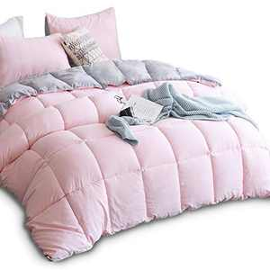 KASENTEX All Season Down Alternative Quilted Comforter Set with Sham(s) - Reversible Ultra Soft Duvet Insert Hypoallergenic Machine Washable, Queen, Pink Potpourri/Quartz Silver