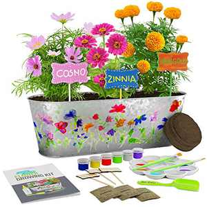 Paint & Plant Flower Growing Kit for Kids - Best Birthday Crafts Gifts for Girls & Boys Age 4, 5, 6, 7, 8-12 Year Old Girl Christmas Gift - Childrens Gardening Kits, Art Projects Toys for Ages 4-12