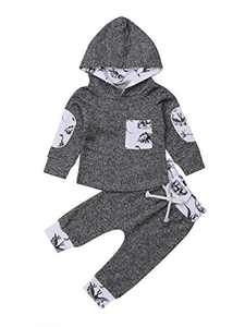 Toddler Infant Baby Boys Dinosaur Long Sleeve Hoodie Tops Sweatsuit Pants Outfit Set (0-6 Months, Style 4)