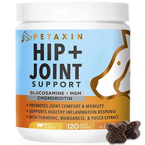 Petaxin Glucosamine for Dogs – Advanced Hip and Joint Supplement for Dogs - Dog Joint Supplement for Joint Pain Relief and Mobility – Dog Glucosamine with Chondroitin, MSM, Turmeric - 120 Soft Chews