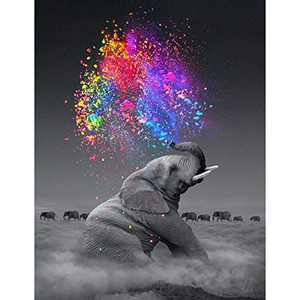 DIY 5D Diamond Painting Kits for Adults Full Drill Embroidery Paintings Rhinestone Pasted DIY Painting Cross Stitch Arts Crafts for Home Wall Decor 30x40cm/11.8×15.7Inches (Elephant)