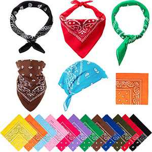 Boao 12 Pieces Novelty Gradient Bandana Classic Paisley Handkerchief (Color E)